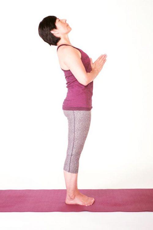 Jñana Dakini Yoga Maestra
